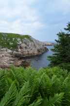 Duncan'sCove5_July15